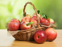 H_golden red green delicious best choice cheapest price apple
