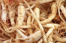 100% Natural and Best Quality Ginseng Extract ( Panax Ginseng)