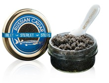 Russian Caviar, Sterlet