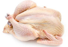 WHOLE CHICKEN.....High quality! buy cheap halal whole frozen chicken from Brazil