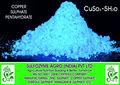 la alimentación animal aditivo mineral elemento traza de sulfato de cobre pentahidratado