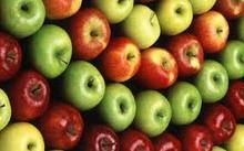 Premium High quality bulk fresh Fuji apple and Best sale