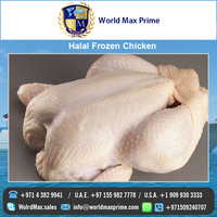 Branded Top Quality Whole Halal Frozen Chicken Supplier