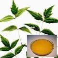 el aceite de neem