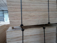 Very competitve packing plywood from Viet Hai Trading company limited in Vietnam