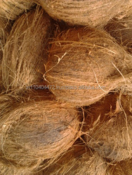 coconuts in bag