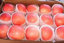 Sweet Fuji Apple