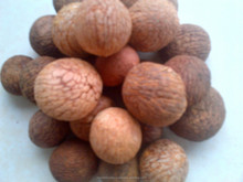 LALLI(RED BETEL NUTS)