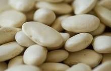 Quality Class 1 Butter Beans