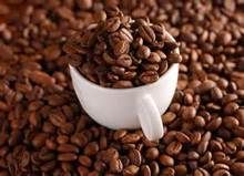 Green Washed Arabica Coffee Beans/ Arabica raw coffee beans/Arabica Natural Green Coffee Beans