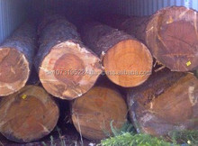 White European Ash Veneer logs