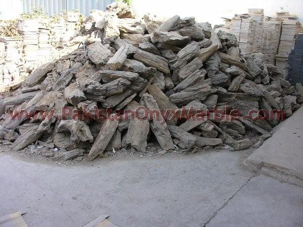 petrified-wood-rough-04.jpg