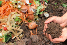 Organic Kitchen Waste Management