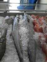 king fresh fish sea food kannad (Omani)