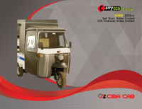 Auto Rickshaw Carry Pickup van