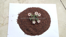 Brown Sesame Seeds Best Selling 42% min oil admixture 0.05% max