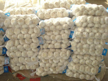 Chinese New Crop White Garlic 6.0cm, Pure Garlic Shandong Organic Cultivation Type Garlic for Sale