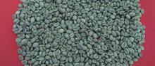 Robusta Green Coffee Bean Grade A