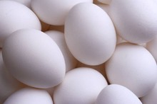 high quality chicken eggs