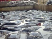 BLOWN BITUMEN IN 25KG CRAFT OR PLASTIC BAG 115/15 95/25 105/35 85/25 90/40 90/15