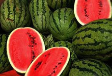 Fresh Melon, Fresh Water Melon