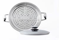 Professional Platinum 13 inch Grill Pan With Cover