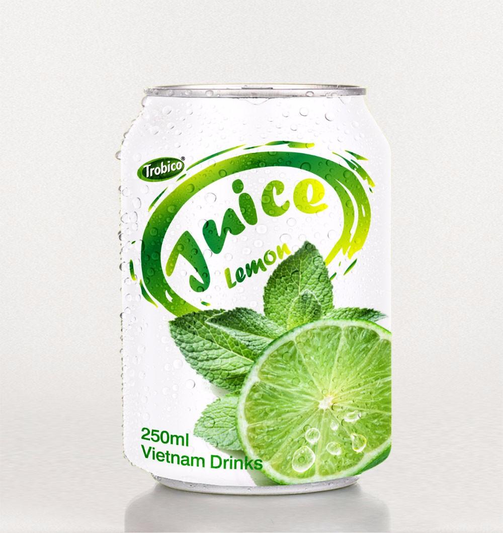 250ml short canned Lemon juice.jpg