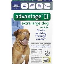 Bayer Advantage II for Extra Large Dogs - 4 pack