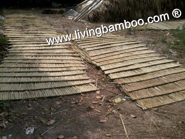 Thatch roof natural material for bamboo house for Bamboo roofing materials