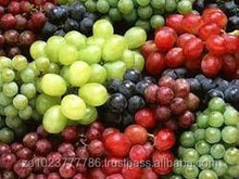 Fresh Grapes High Quality Fresh Grapes Fresh Grapes VERY HIGH GRADE Hot Sales