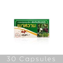 Diabetes Cure (Lower Sugar) 100% Herbal Medicine from Thailand - Pack 30 Capsules