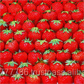 Fresh/Frozen Strawberry Fruits Class 1 high quality Hot Sales