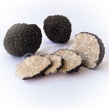Black Summer Truffles -Tuber aestivum vitt.