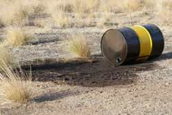 Oil Spill Bioremediation using Microbial Enzymes