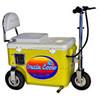 Electric Cruzin Cooler 250 Watts