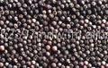 Black Pepper / White Pepper / Spice / Clove , Garlic , Ginger