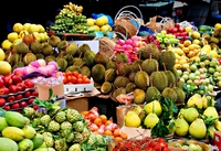 The Best Sales High Quality Thailand Importers Seller of Fresh Fruit