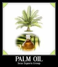 Pure crude palm oil cpo price