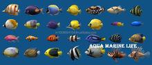 Imported marine aquarium fish