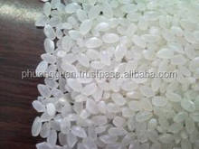 High quality Japonica rice/short rice 5% broken- New crop( hieu.phuongquan@gmail.com)
