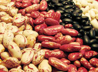 Red Speckled Kidney Beans/Dark Red Kidney Bean Black White and Red Kidney Beans
