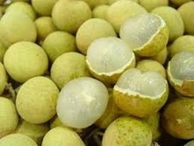 FRESH SWEET LONGAN FRUIT WITH BEST PRICE AND SAFE QUALITY FROM VIETNAM