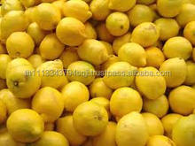 Fresh Eureka Lemon Ready For Export