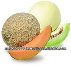 Fresh Melon & Cantaloup HIGH GRADE A FOR SALE