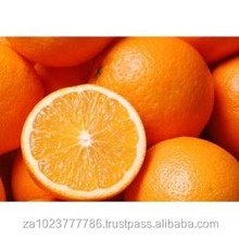 Fresh Oranges GRADE a FOR SALE HOT SALES