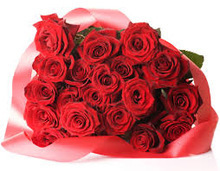 red roses fresh cut flowers wholesale export