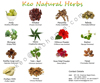 Herbal Extracts, Indian Medicinal Herbs