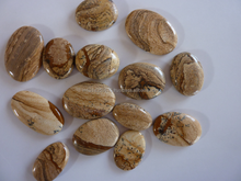 Direct Wholesale AAA Quality Picture Jasper Cabochon Gemstone