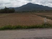 Land 450 rai (720,000 square meters) in Chiangmai Thailand