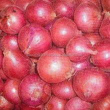 Spring/Summer Onions